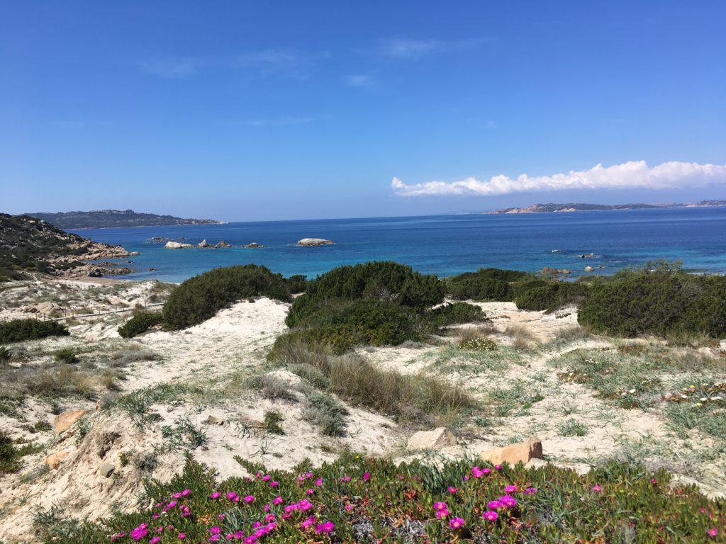 homokdűnék a tengerparton - la maddalena sziget, szardínia