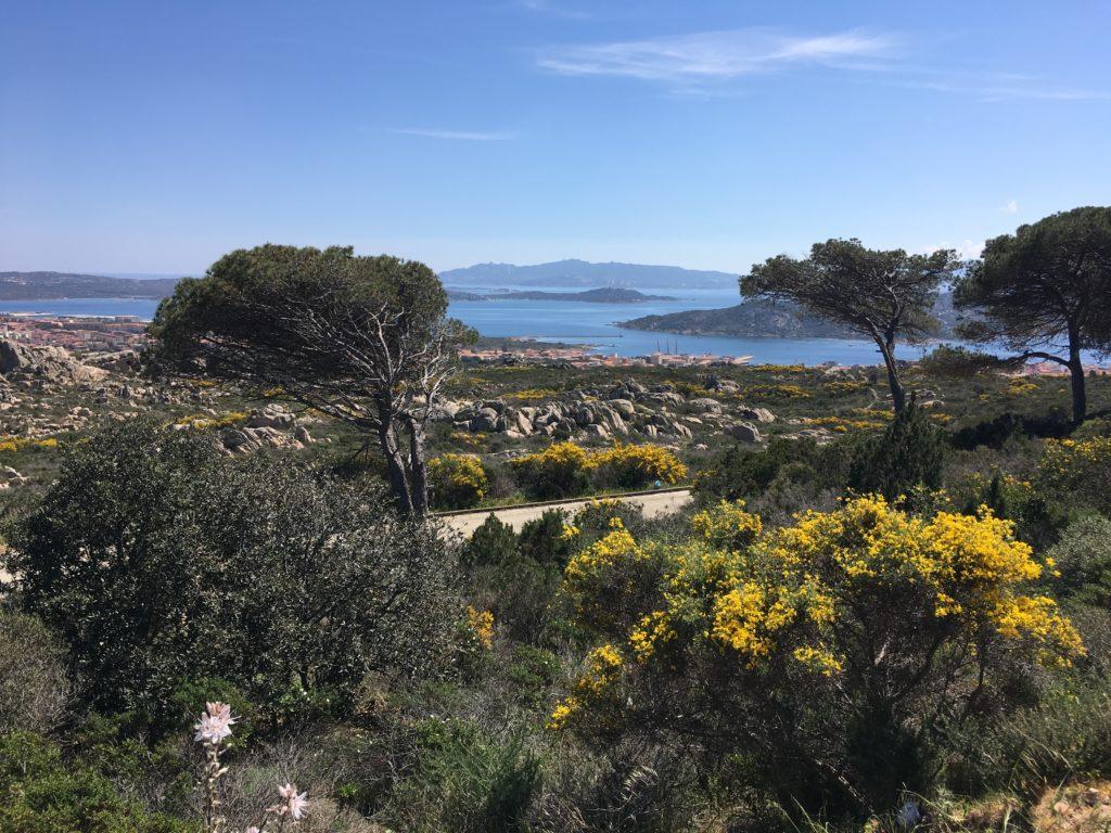 Panoráma la Maddalena sziget egyik útjáról,