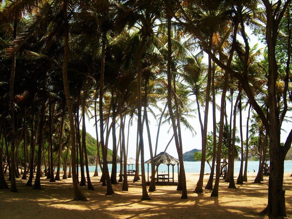 Guadeloupe sziget egyik tengerpartja