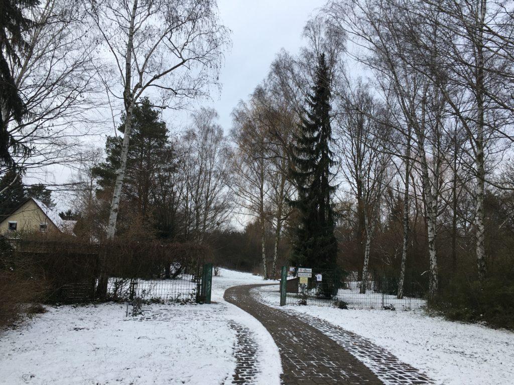 téli séta