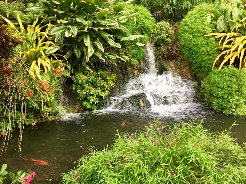 világ egyik legszebb botanikus kertje